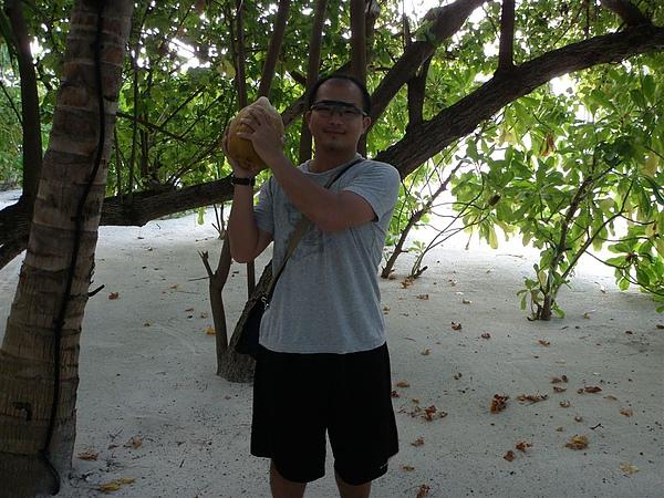 大椰子~   地上撿的   哈哈