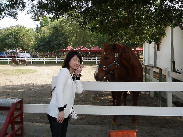 很怕馬ㄦ用頭撞我