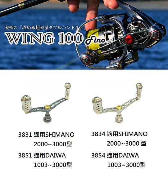 wing100-2