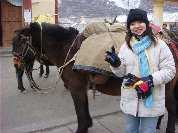 雨婷和他的馬