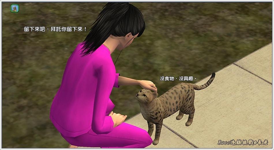 白澤-3 (71).jpg