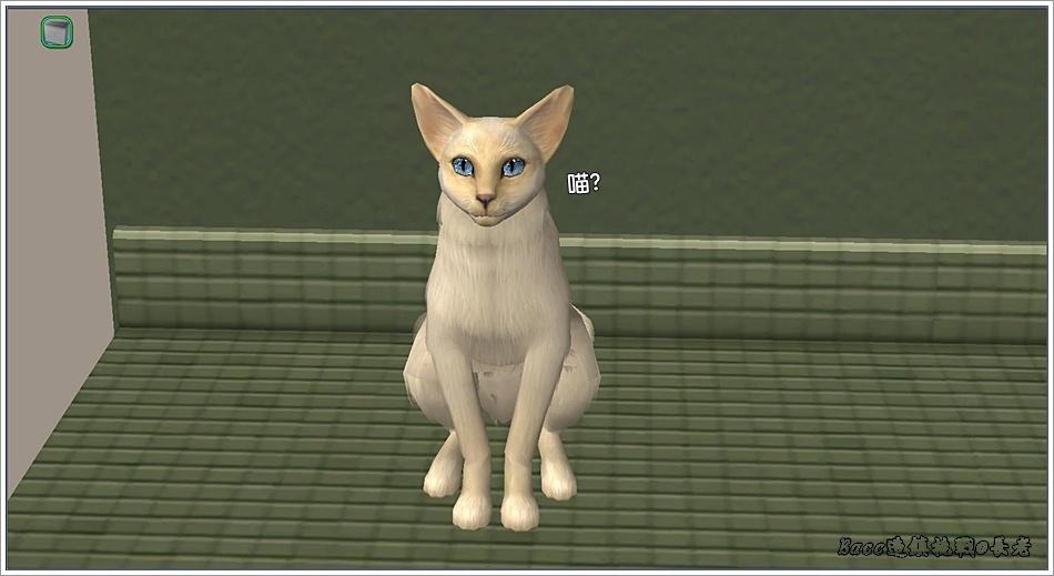 白澤-4 (8).jpg