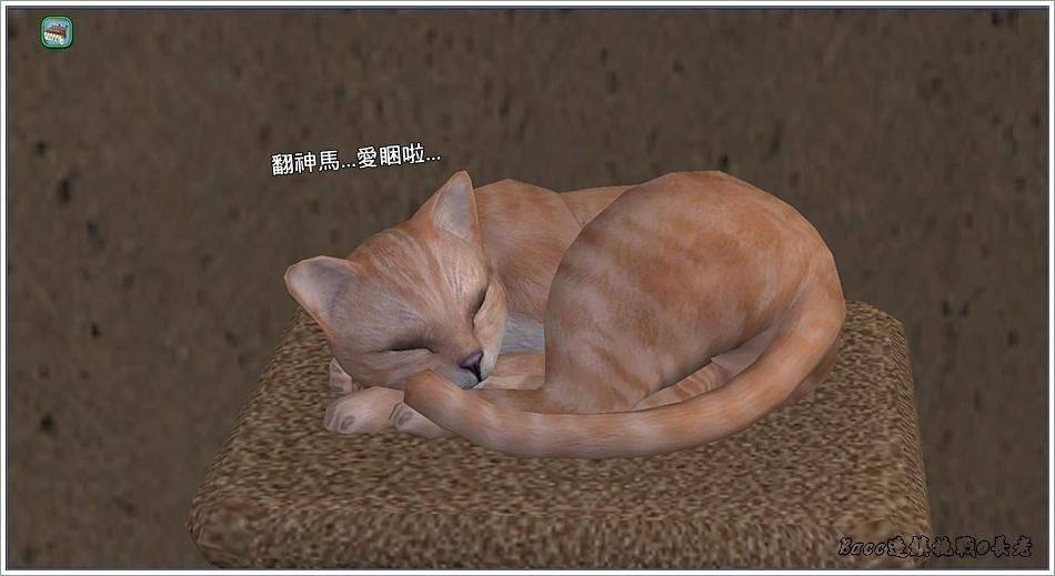 白澤-4 (57).jpg