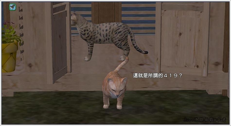 沙守-6 (36).jpg