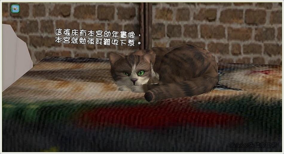 安琪-2 (9).jpg