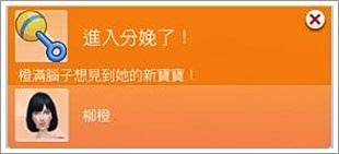 柳橙-4 (63).jpg