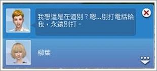 柳葉-1 (14).jpg