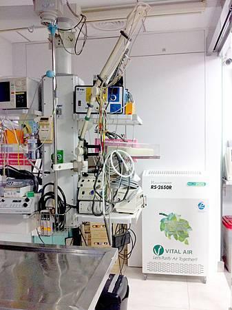 五洲動物醫院03_fix.jpg