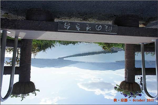 天橋立B_003.JPG