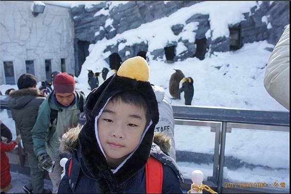 D4-旭山動物園039.JPG