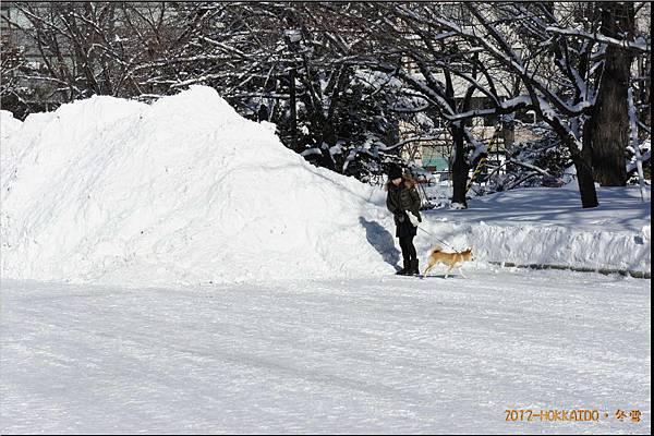 D6-道廳雪祭015.JPG