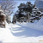 D6-道廳雪祭020.JPG
