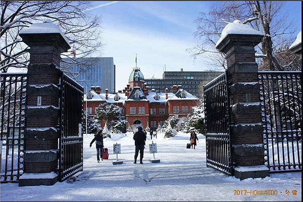 D6-道廳雪祭031.JPG