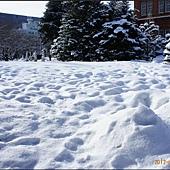 D6-道廳雪祭030.JPG
