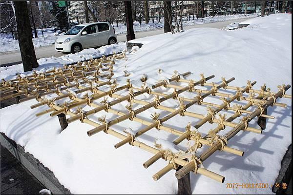 D6-道廳雪祭033.JPG
