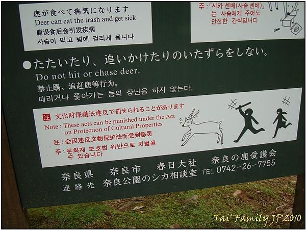 奈良公園014.JPG
