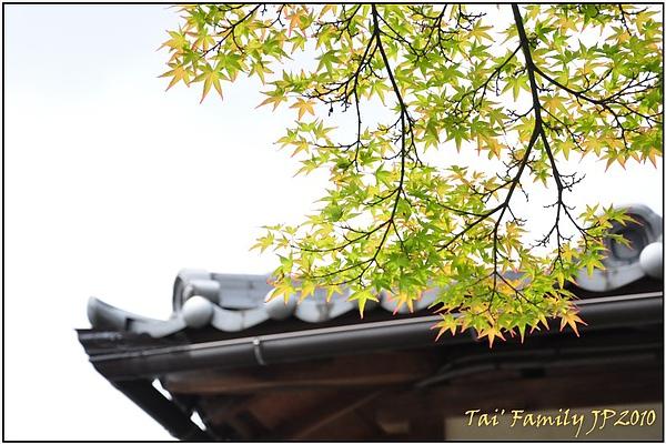 奈良-二月堂113.JPG