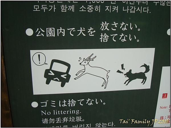 奈良公園013.JPG