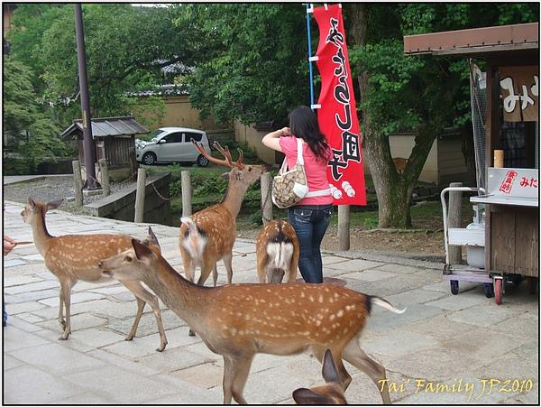 奈良-東大寺025.JPG