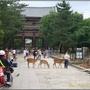 奈良-東大寺024.JPG