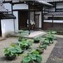 奈良-二月堂110.JPG