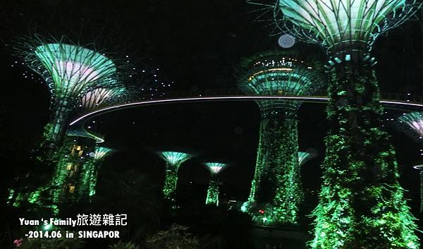 濱海灣花園 (3).png