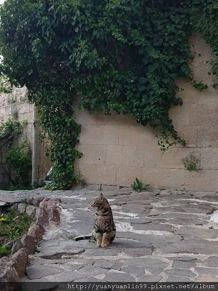 7GAMIRASU洞穴旅館 (89).jpg
