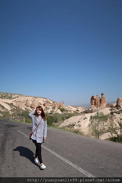 9駱駝岩、蘑菇岩 (11).JPG