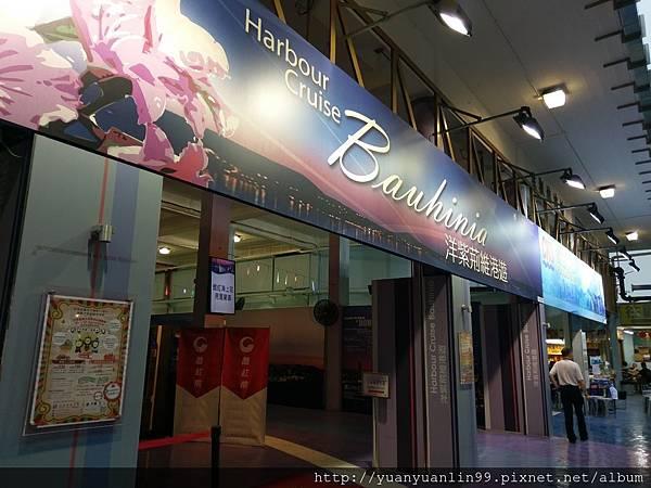 4洋紫荊遊船 (1).jpg
