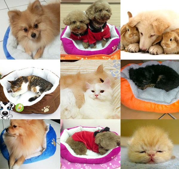 【Happy Pet】快樂寵物墊2件組05