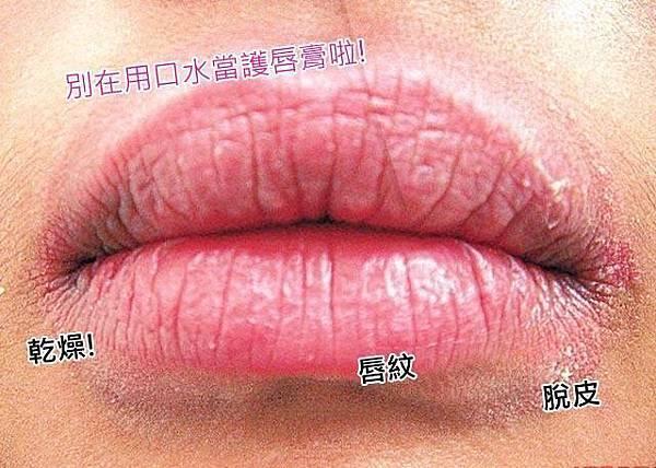 ✿嘴唇乾燥脫皮的救星!【蜂膠蜂蠟萬用唇蜜】
