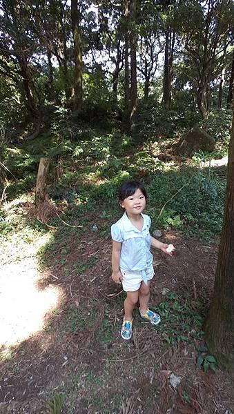100_1739-20150718.JPG