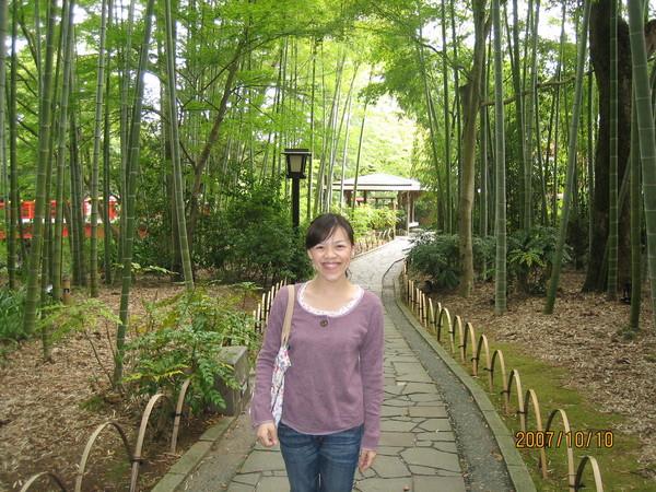 清新的竹林小徑