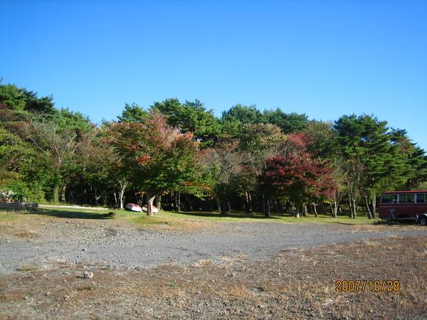 樹林的後面可以看到富士