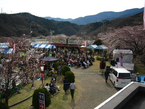 熱鬧的櫻花祭~還有人來模仿秀哩