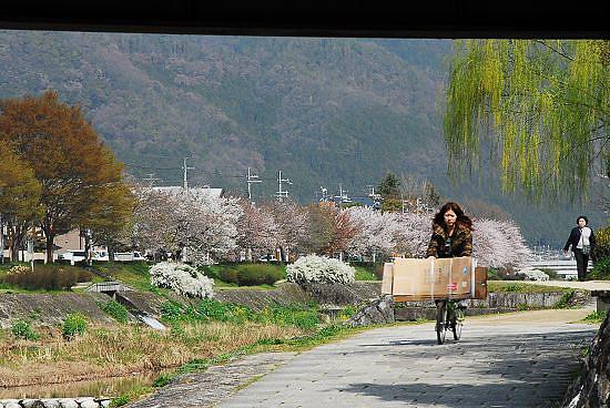 騎腳踏車載著一堆紙箱的女子