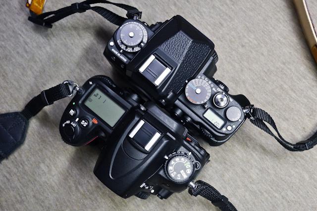 DF-024-P1120545