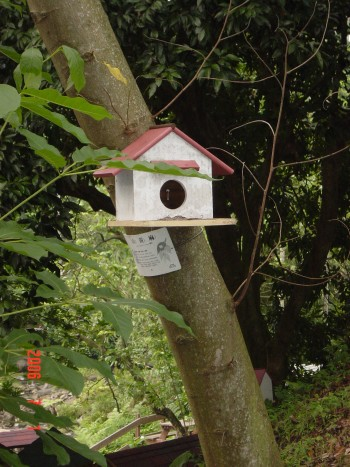 鳥兒休息的家