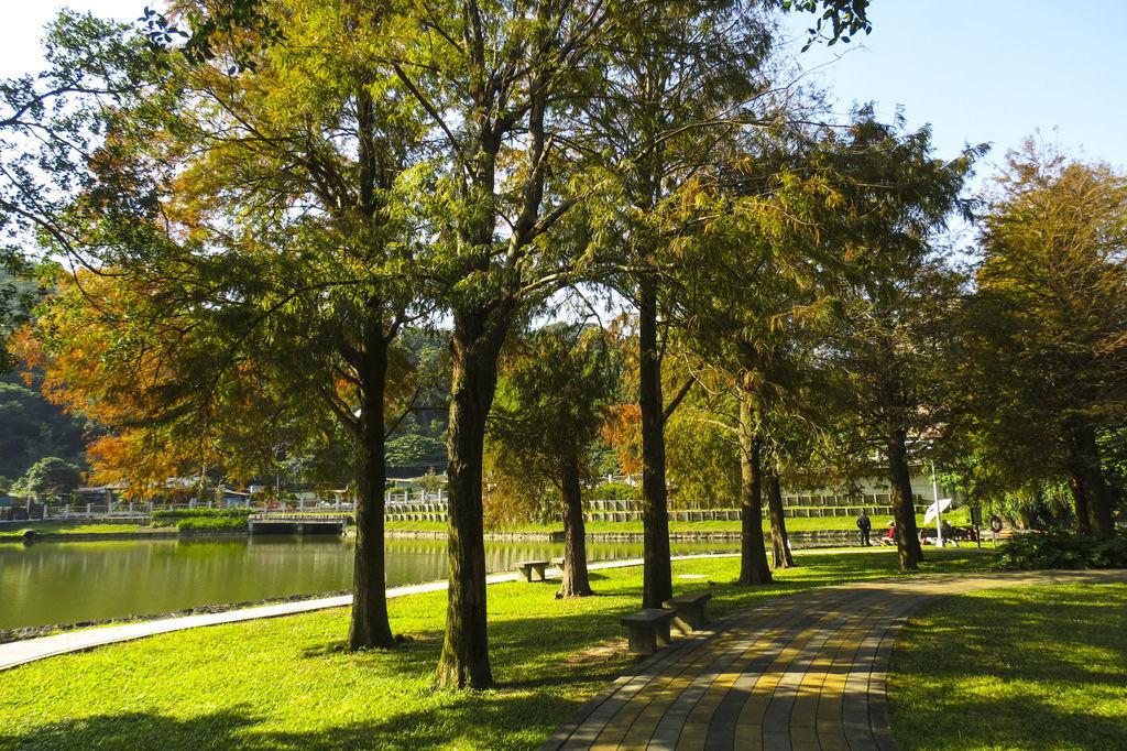 IMG_5359    大湖公園