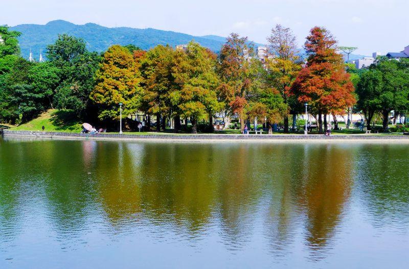 P1480673    大湖公園_副本