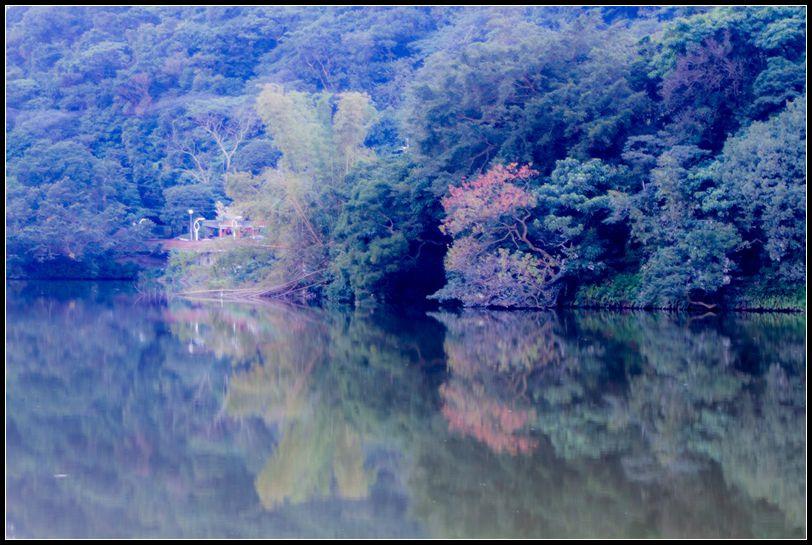 _MG_7079   AAAA_副本    大湖公園