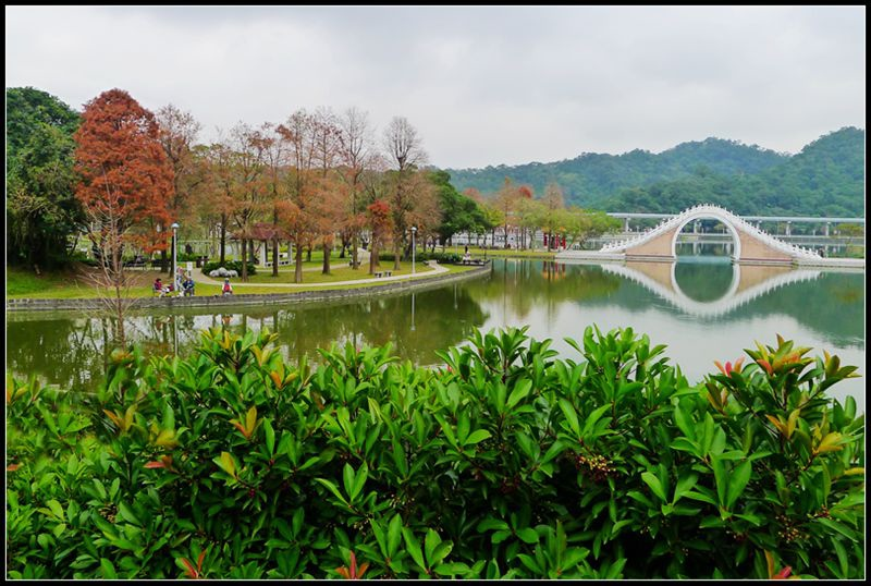 P1510552   大湖公園_副本
