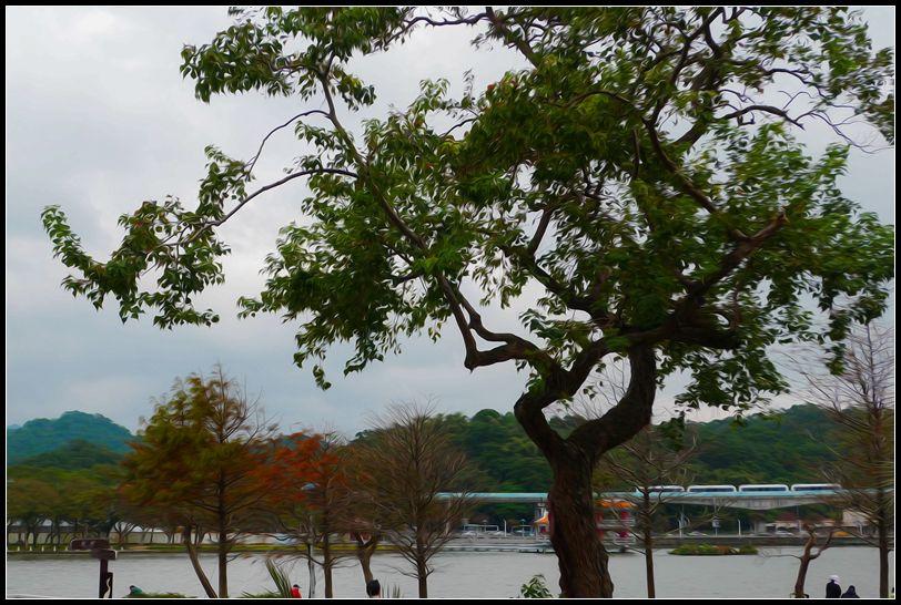 P1490777   大湖~2_副本   大湖~2