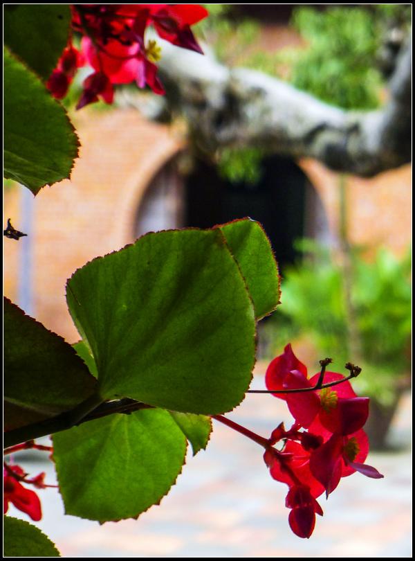 P1590338     華陶窯~2.