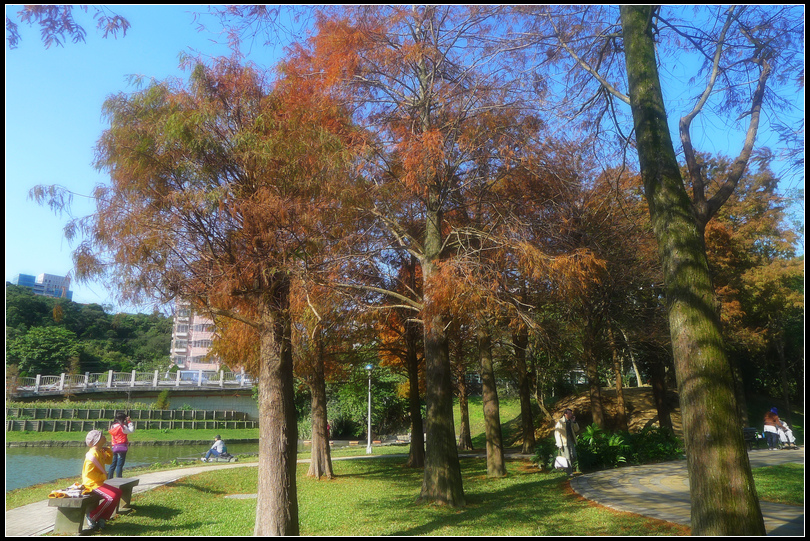 P1700619  大湖公園