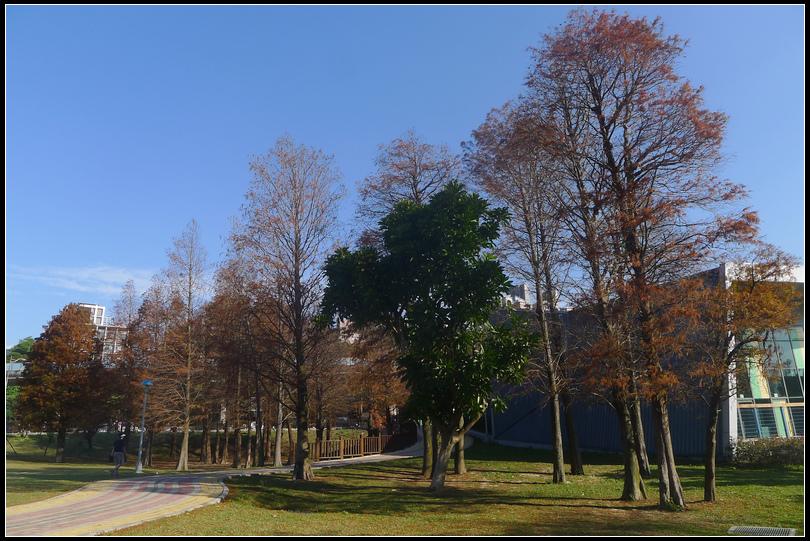 P1700504  大湖公園