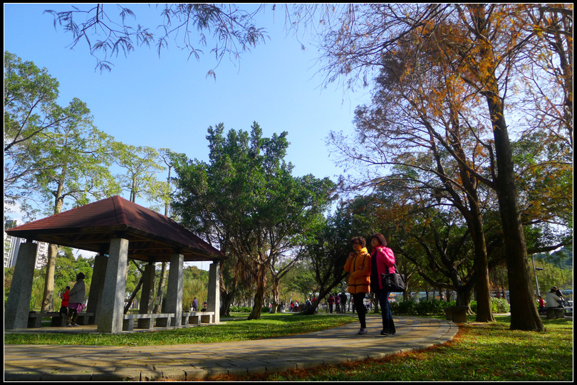 P1700668  大湖公園