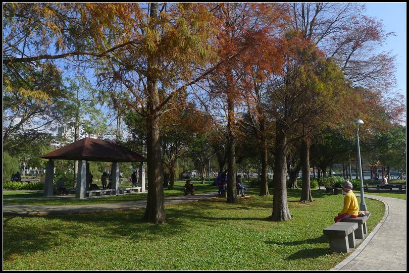 P1700643  大湖公園