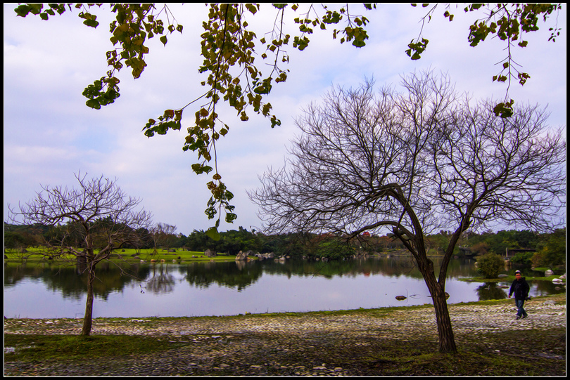 _MG_4857  羅東運動公園
