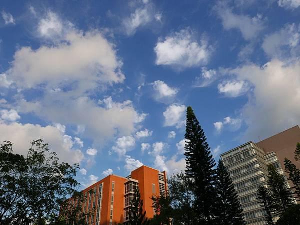 L1000421    高積雲